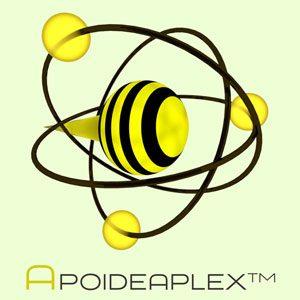 Apoideaplex